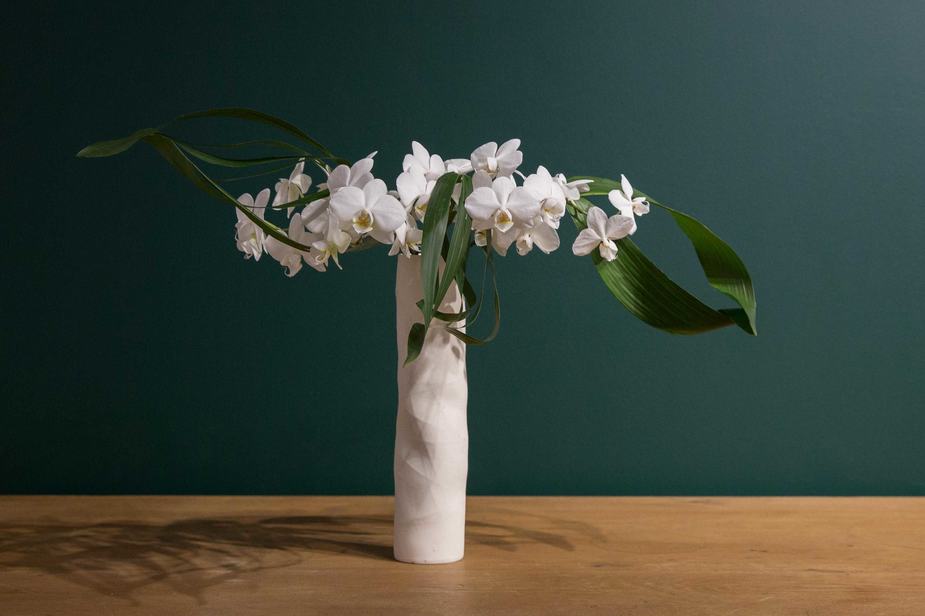 Ikebana_arrangement_by_Mr_Suga